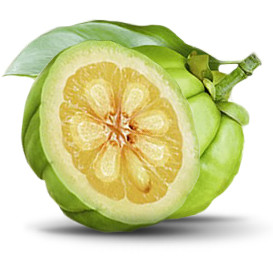 Top Brands of Garcinia Cambogia