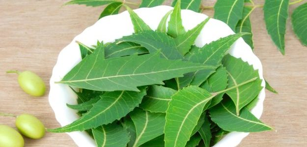 How To Treat Diabetes With Neem